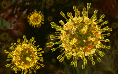 How Long Does Coronavirus Linger On Surfaces?